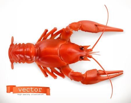 Red crayfish. 3d vector icon. Seafood, realism style