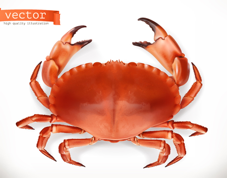 Red crab. 3d vector icon. Seafood, realism style Illustration