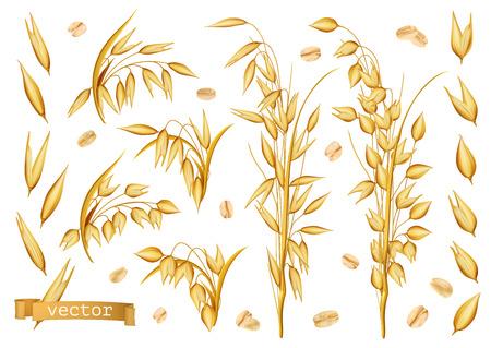 Plantes d'avoine, flocons d'avoine. Jeu d'icônes vectorielles réalistes 3D
