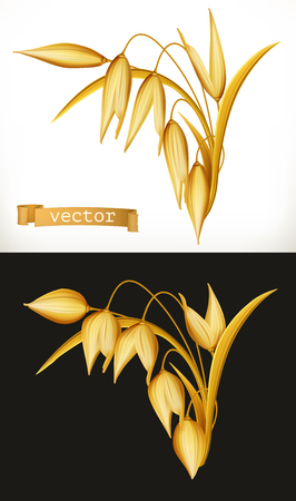 Oat. 3d realistic vector icon Illustration