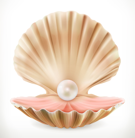 Shell with pearl. Clam, oyster 3d vector icon Illustration