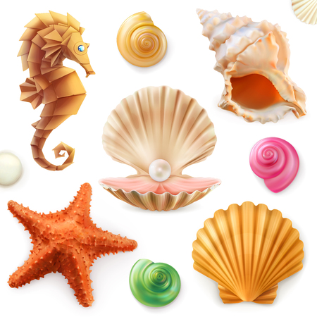 Shell, snail, mollusk, starfish, sea horse. 3d icon set