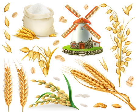 Grano, riso, avena, orzo, farina, mulino, grano. Insieme dell'icona di vettore realistico 3D