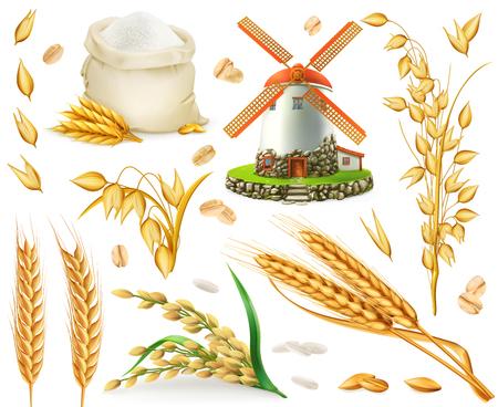 Weizen, Reis, Hafer, Gerste, Mehl, Mühle, Getreide. Realistischer Vektorsymbolsatz 3d