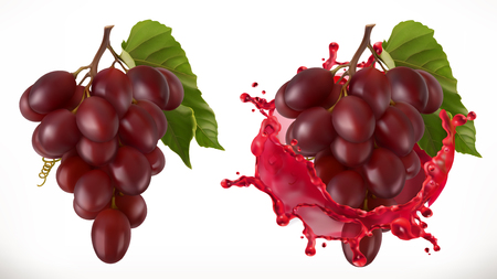 Red wine splash and grapes. Fresh fruit, 3d vector icon