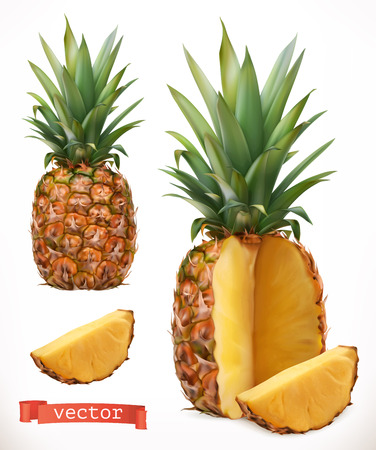 Pineapple. Fresh fruit 3d realistic vector icon