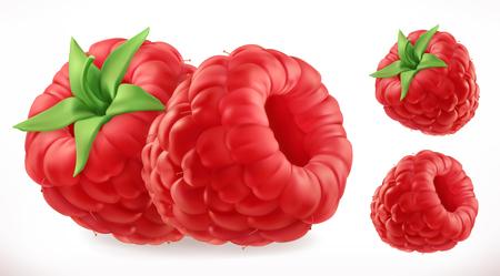 Raspberries. Fresh fruit 3d realistic vector icon Çizim