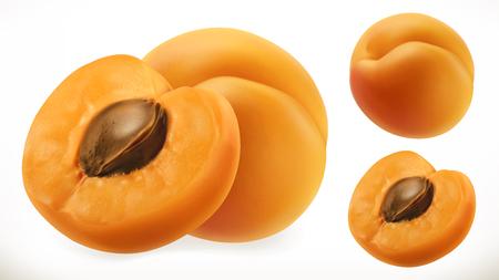 Apricot. Fresh fruit 3d realistic vector icon Çizim