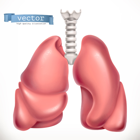 Lungs. Medicine, internal organs. 3d vector icon Çizim