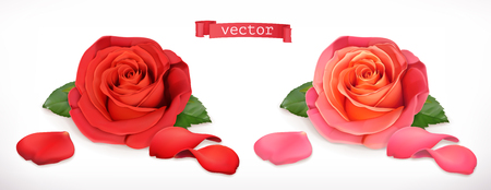 Rose flower. 3d realistic vector icon