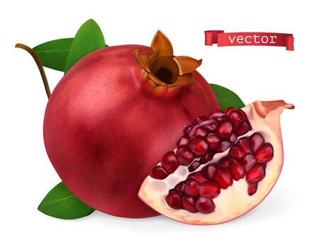 Pomegranate vectorized image. Fresh fruit. 3d realistic vector icon