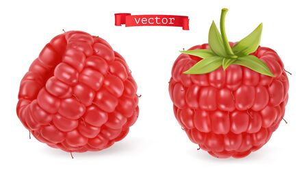 Red raspberry vectorized image. Fresh fruit. 3d realistic vector icon