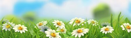 Spring landscape. Green grass and chamomile. 3d vector horizontal panorama 일러스트
