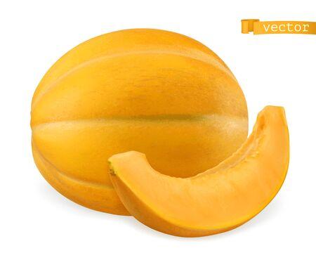 Melon, 3d realistic vector icon