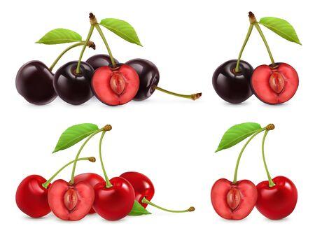 Kirschen. Ganze und halbe Beeren. 3D realistischer Vektorsatz