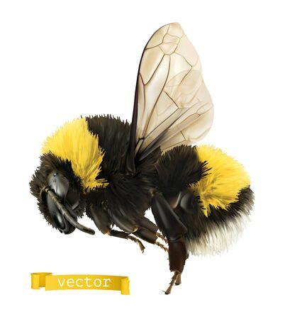 Bumblebee. 3d realistic vector icon 일러스트