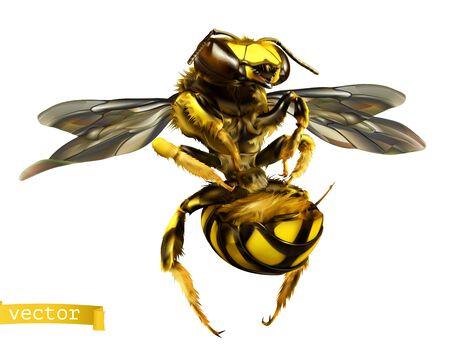 Wasp. 3d realistic vector