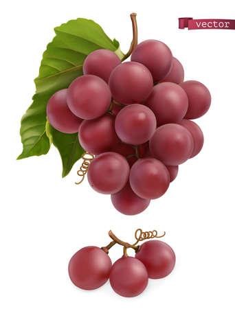 Grapes. Fresh fruit, 3d realistic vector Ilustração