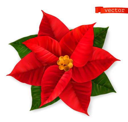 Poinsettia, Christmas Star. 3d realistic vector icon Ilustração
