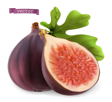 Figs 3d realistic vector icon