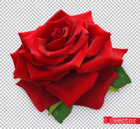 Red Rose. 3d realistic vector object Ilustração