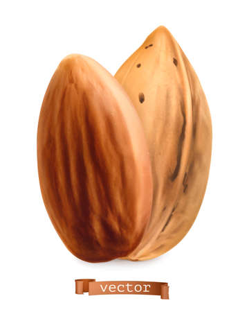 Almond nuts in shell and shelled. 3d realistic vector