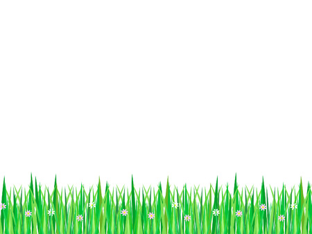grass verge: stripe of grass with flowers on white background Illustration