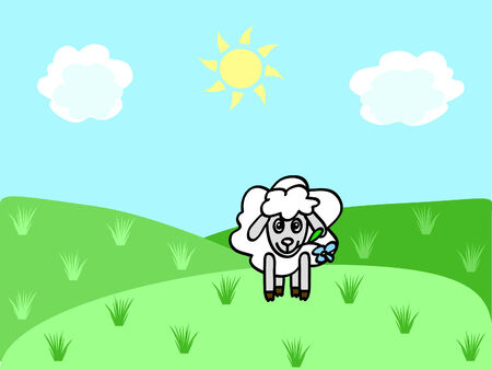 bleating: a funny sheep chewing flower on the meadow