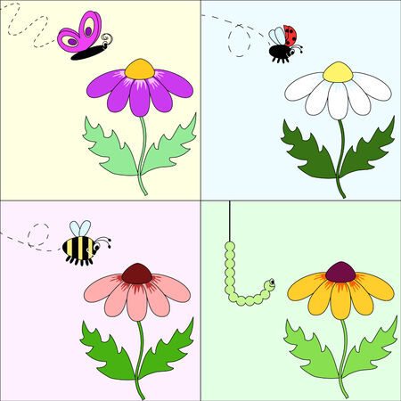 a set of four vector pictures with different flowers and insects