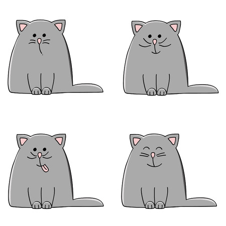 gray hair: a cute plump kitten in four different varieties of mood