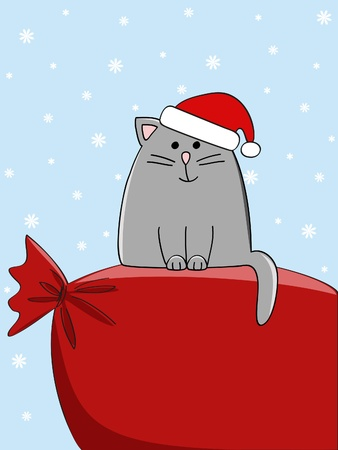 a cute cat sitting on a big present bag Vector