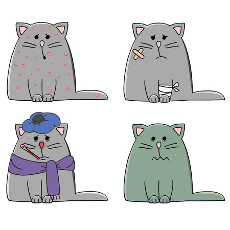a set of four cats with different illnesses