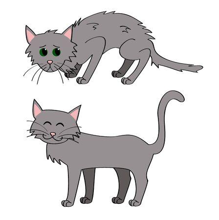 gato caricatura: gato sin hogar y adoptado ilustraci�n vectorial gato Vectores