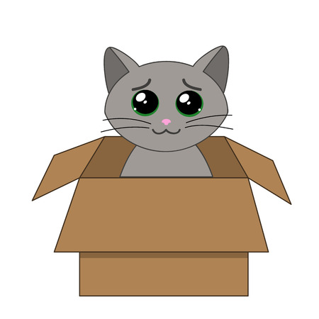stray: cute kitten looking out of a cardboard box
