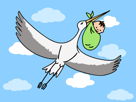 stork delivering a baby: a flying stork carrying a bundle with a newborn baby