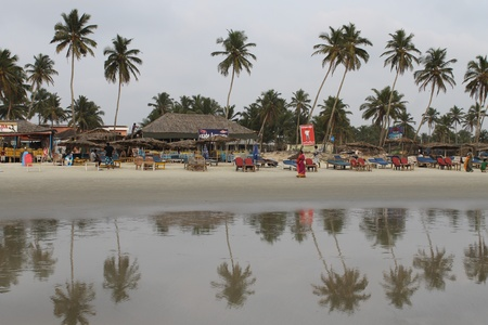 Indian Ocean, South Goa, Colva beach part, a reflection of trees in the sand