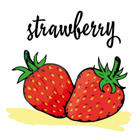 nutritional: strawberry is hand-painted in a very simple circuit and strokes