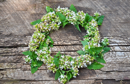 a wreath of mint on a wooden Board Stock Photo