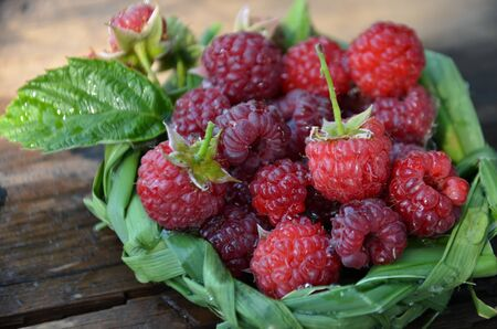 fresh raspberry in a basket of leaves on the wooden background with water drops