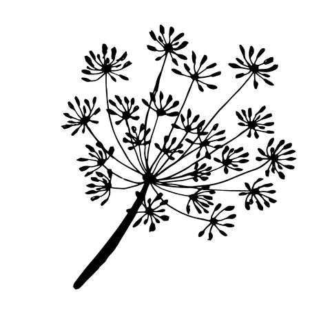 sprig and fennel seeds are drawn with a black outline Vectores