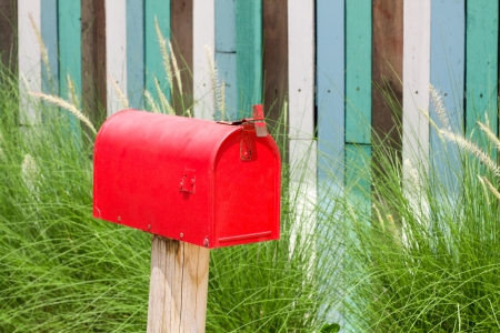 A plain Red Mailbox  in front of some bushes. photo