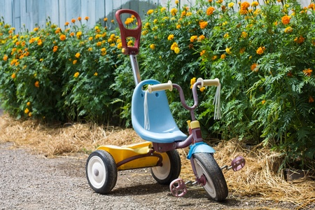 kid tricycle in garden photo