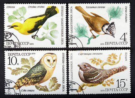 USSR - CIRCA 1979: a series of stamps printed in USSR, shows birds, CIRCA 1979
