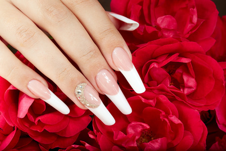 manicure salon: Hand with french manicure on red roses background