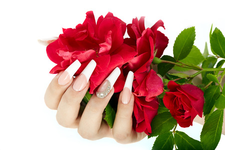 Hand with french manicure holding a red rose flower