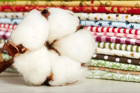 cotton flower: Cotton flower close-up and variety of cotton textiles Stock Photo