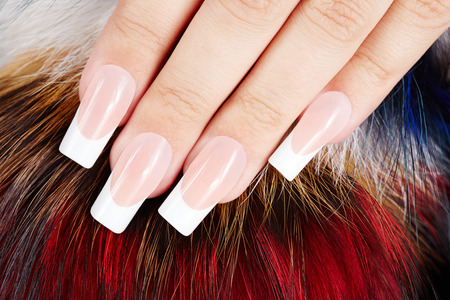 nails woman: Hand with long artificial french manicured nails on fur background Stock Photo