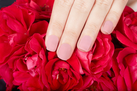 matte: Hand with beige matte manicured nails and red rose flowers Stock Photo