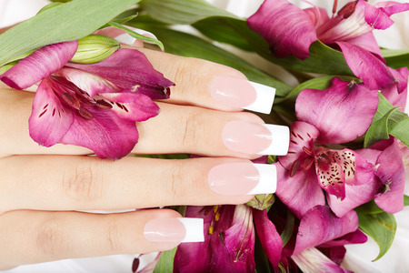 artificial nails: Hand with long artificial french manicured nails on Alstroemeria lily flowers background
