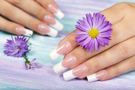 Handen met lange kunstmatige french gemanicuurde nagels en paarse bloem